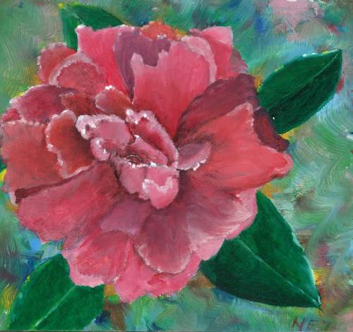 cropped camellia scan