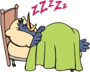 Sleeping ZZZZ's
