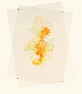Aaliyah Gupta, Lichen, Acrylic on Duralar